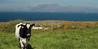 walking holidays in ireland