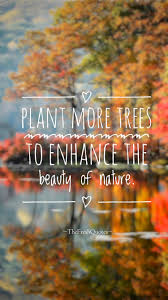 50 beauty of nature quotes u0026 slogans with images quotes u0026 sayings