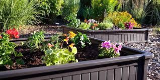 raised garden beds for sale 14 best raised garden beds for spring 2018 garden beds boxes