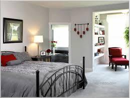 Bedroom Ideas For Teenage Girls Bedrooms Splendid Toddler Boy Bedroom Ideas Boys Room Teen