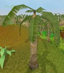 Fruit Trees Runescape - leafy palm tree runescape wiki fandom powered by wikia