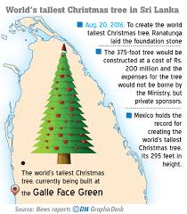 let not the tallest christmas tree prevent us from seeing the baby