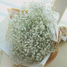 baby s breath flowers large baby s breath bouquet flower delivery south korea 320 5