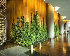 Interior Plant Wall Green Wall Living Wall Hq And Workshop Leed Project