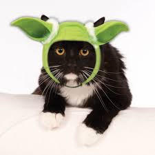 star wars dog halloween costumes star wars yoda hood cat costume dog clothes pinterest cat