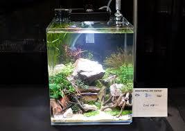 Nano Aquascaping Aquascaping Live 2016 Small Planted Tanks