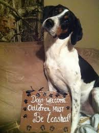 Home Decor Signs And Plaques Plaques With Sayings About Dogs Decor Pet Signs Pet Sayings