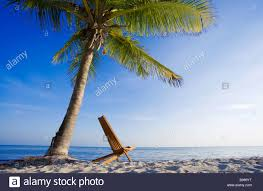 Chairs On A Beach One Chair On Tropical Beach In Key West Florida Usa Stock Photo
