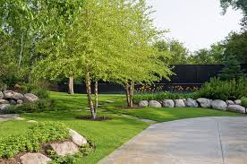 Front Yard Tree Landscaping Ideas Creative Design Landscaping Trees Best 22 Tree Shade Landscaping