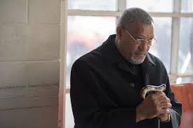 Flag Flying Rules Last Flag Flying Review Fine Cast Crummy Everything Else