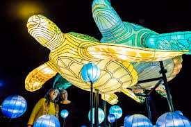 Turtle Back Zoo Light Show by Vivid Sydney The 23 Night Festival Of Music And Light Is Back