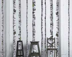 birch tree wrapping paper birch tree etsy