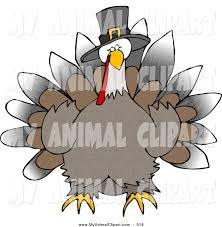 royalty free stock animal designs of birds