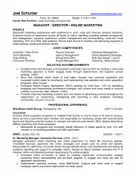 examples of marketing resumes marketing resume sample 2 independent sales rep resume sales ecommerce retail sample resume trucking invoice template summit photo ecommerce marketing manager images regarding marketing resume