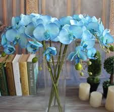 blue orchids for sale gnw real touch blue dendrobium orchids sale plants decorative