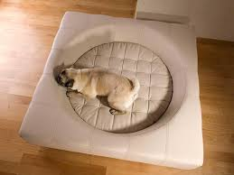 Modern Dog Furniture by Cube Faux Leather Modern Dog Furniture U2013 Dogvis