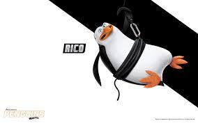 the penguins of madagascar dreamworks animation u0027s penguins of madagascar look for it on blu