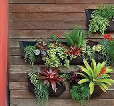 Hanging Wall Planters Amazon Com Living Wall Planter Indoor Outdoor Use W Reservoir