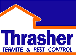 how to identify drywood termite droppings thrasher termite