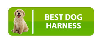 guide dog harness best dog harness reviews pet wellness advisor
