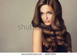 girl hair hair stock images royalty free images vectors