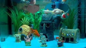 spongebob squarepants fish tank setup