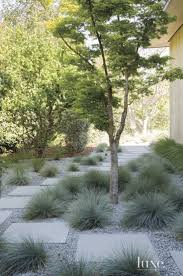 Landscape Ideas For Side Of House by Best 20 Modern Landscape Design Ideas On Pinterest Modern