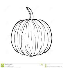 pumpkin black and white pumpkin black and white pumpkin illustration stock vector image 45344981