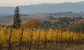 celebrate thanksgiving in oregon wine country travel oregon