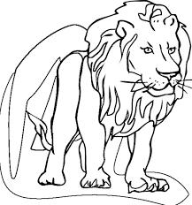 lion coloring kids color luna