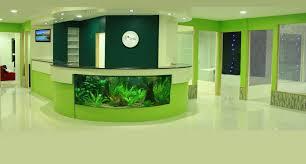 best dental clinic in malabar perinthalmanna kerala