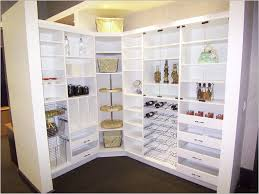 idea for kitchen pantry storage ideas 25 best kitchen pantry cabinets ideas on