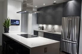 custom kitchen cabinets nyc modern kitchen chelsea nyc modiani kitchens modern