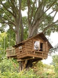 Backyard Treehouse Ideas 303 Best Treehouse Ideas Images On Pinterest The Tree Treehouse
