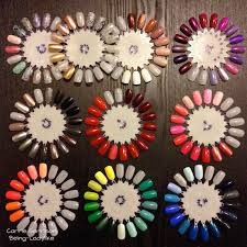 how to organize your nail polishes using nail wheels from sally u0027s