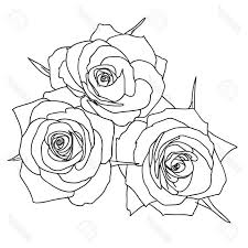 top three roses outline vector pictures free clip designs