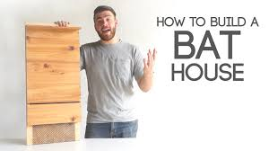 How To Build A Bat House Modern Builds