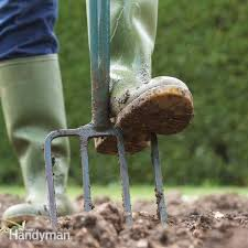 How To Start A Garden Bed 444 Best My Garden Ideas And Tips Images On Pinterest Flower