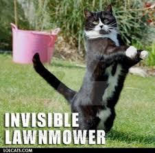 Lawn Mower Meme - lawnmower me lawn plz by xxspiritwolf2000xx on deviantart