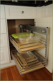 Kitchen Cabinets With Pull Out Shelves Shelves Awesome Modern Stainless Holder Blind Corner Kitchen