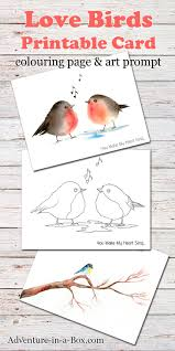 birds free printable card colouring u0026 drawing prompt