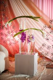Wedding Decorators Appealing Wedding Decorators In Maryland 15 With Additional