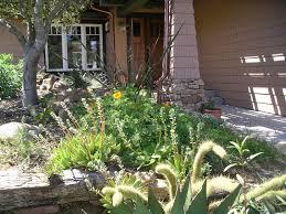 san diego native plant society a california native plant garden in san diego county a california