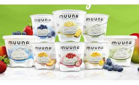 non dairy cottage cheese muuna sees rapid growth with its innovative cottage cheese