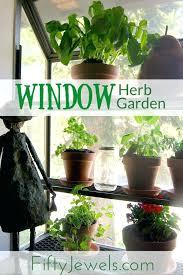window herb harden window herb garden window sill herb garden kit dcacademy info