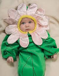 Infant Halloween Costumes 3 6 Months Images Infant Halloween Costumes 6 9 Months Baby Toddler
