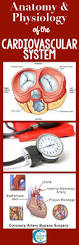 the 25 best anatomy and physiology book ideas on pinterest the