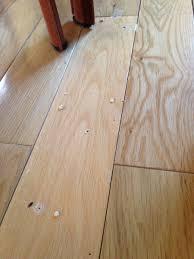 Powder Post Beetles In Hardwood Floors - darci sellers realtorsellers twitter