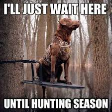 Hog Hunting Memes - awesome hog hunting memes related keywords suggestions for hog
