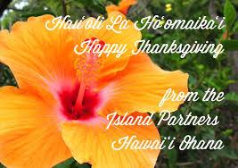 island partners hawai i home